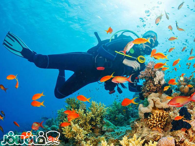 تفریحات دریایی قشم کدام است؟ | Qeshm recreations
