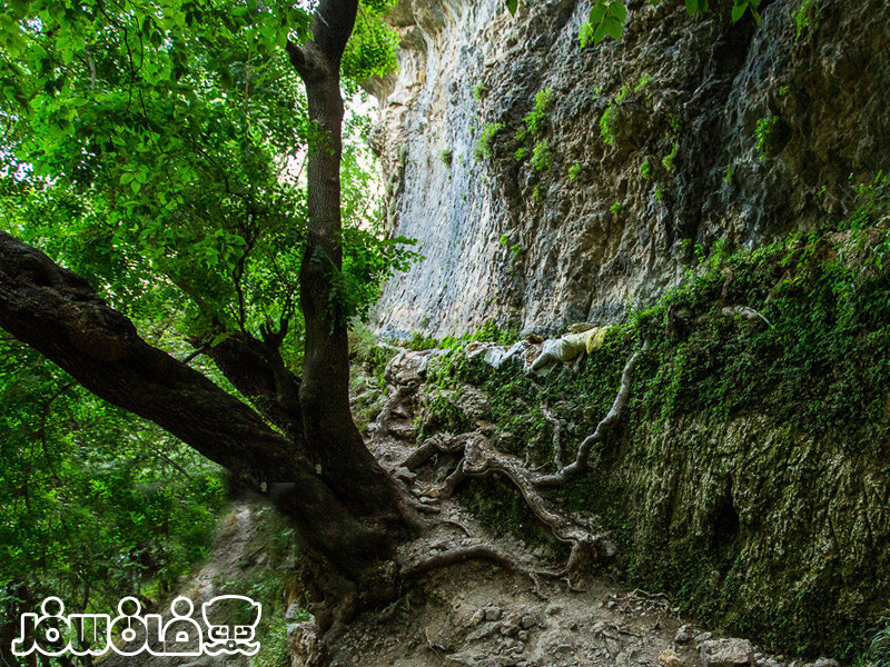 آبشارها و حوضچه های تنگه تامرادی کهگیلویه و بویراحمد