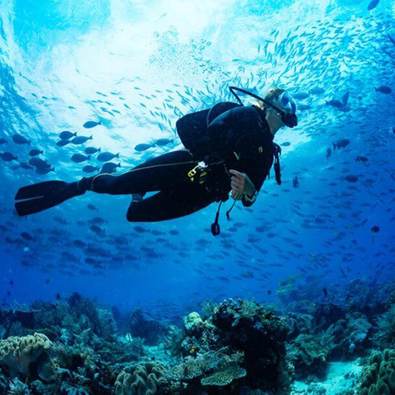 کلوپ تفریحات دریایی اسکوبا کیش | scuba diving academy kish