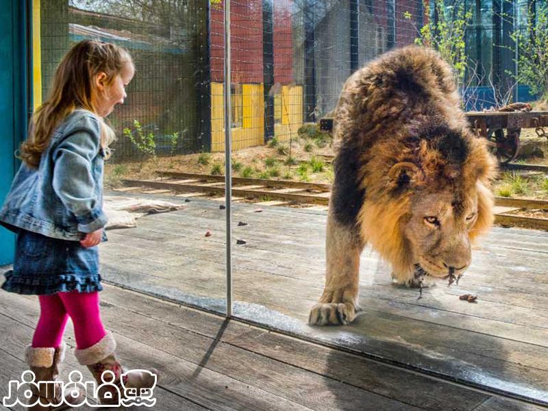 باغ وحش لندن