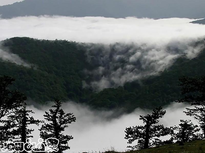 تور جنگل ابر نوروز