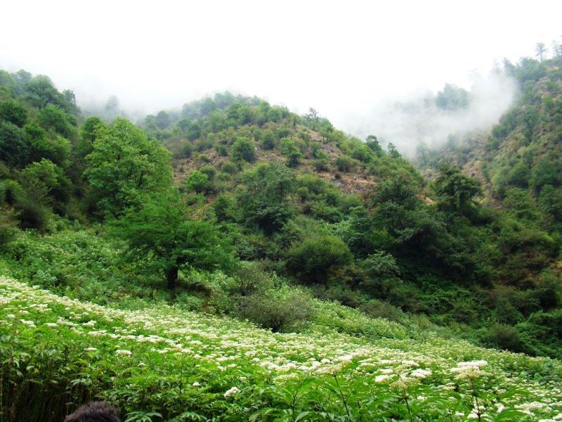 6 مقصد محبوب طبیعت گردی در ایران را بشناسید